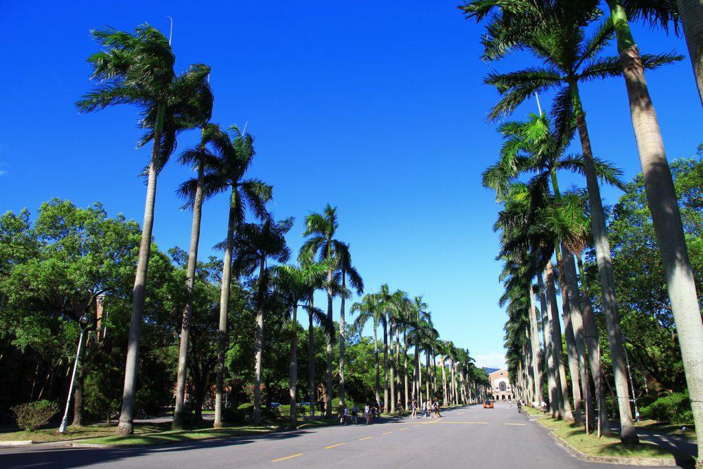 Universidad de Taiwan